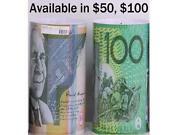 Australian Money Tin