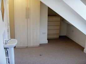 Double Attic Room in Immaculate and Friendly Professional House, No Deposit, Most Bills Included