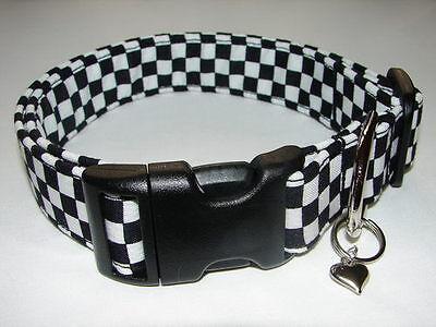 Charming Nascar Checkered Flag Dog Collar