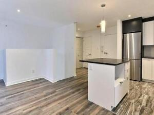 3 ½ split level Condo for rent near down town Montreal & MUHC ho