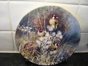 Bird Plates