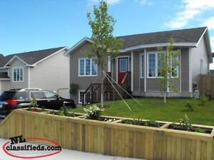 Pet Friendly - 2 Bedroom Basement Apartment - Ready to Rent!!