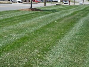 GALWAY GREEN'S LANDSCAPING LAWN CARE, MAINTENANCE, BRANTFORD