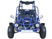300cc Trail master buggy off-road Jamisontown Penrith Area Preview