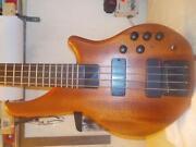Status Bass
