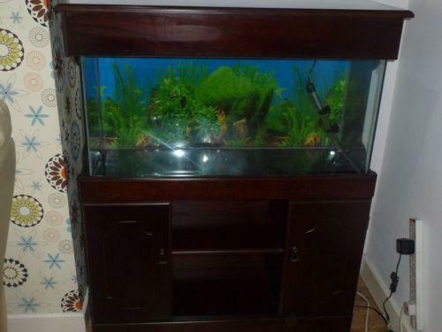 Used 3ft fish tank ebay for Outdoor fish tank uk