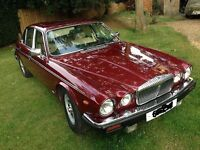 Classic Jaguar Daimler for sale
