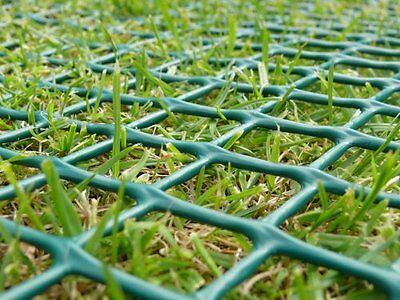 Grass Protection & Re-inforcement Mesh Installed
