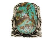 Indian Mountain Turquoise