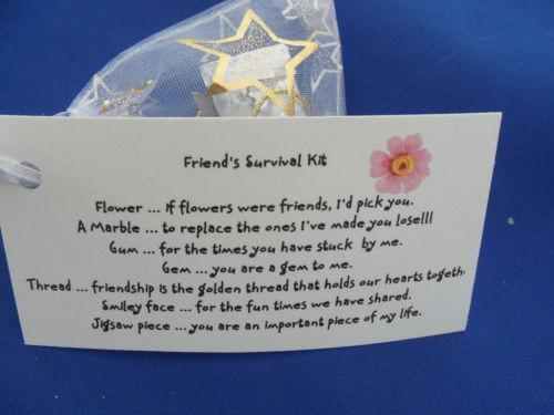 Friend Survival Kit Other Celebrations Amp Occasions Ebay