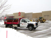 LARGE PROPERTY SALTING AND SNOW REMOVAL starting at $100