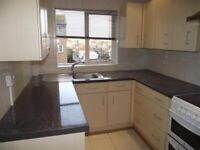 Gorgeous New 4 BEDROOM *NEWLY DECORATED*