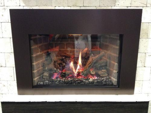 Direct Vent Gas Fireplace Insert Ebay