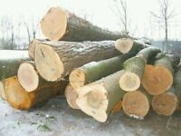 I am in need of some green firewood logs