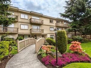 Spacious 1 Bedroom Available in Burnaby!