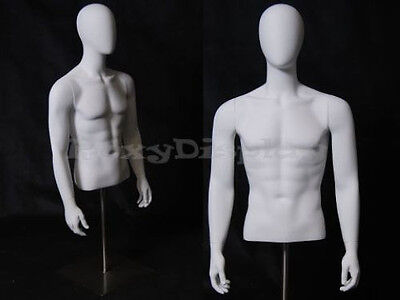 Fiberglass Male Mannequin Dress Form Display Torso Half Body Egg Head Egtmsa-md