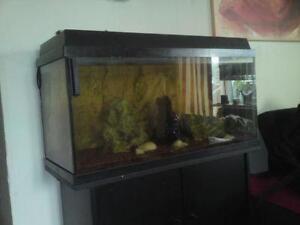 aquarium komplett aquarien ebay. Black Bedroom Furniture Sets. Home Design Ideas
