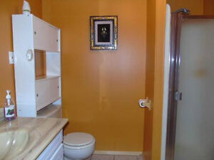 Maison à vendre, 3332  Av du Pont Nord, Alma secteur Delisle Lac-Saint-Jean Saguenay-Lac-Saint-Jean image 9