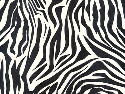 """Zebra Black & White Striped Tissue Paper 20"""" x 30"""" - 20 Larg"""