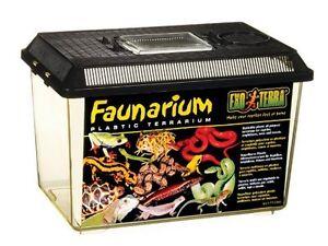 Faunarium Terrarium Faunabox Transportbox Aquarium Reptilien Amphibien Box Tiere