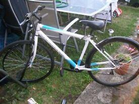 Shoreditch Challenge Bike 700 C