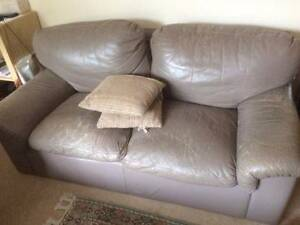 My cat said I want this sofa out of here.... Allawah Kogarah Area Preview