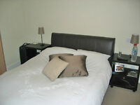 *SHORT LET Cozy 1 Bedroom in Argyle walk, Bloomsbury area- fully furnished, all bills, maid service