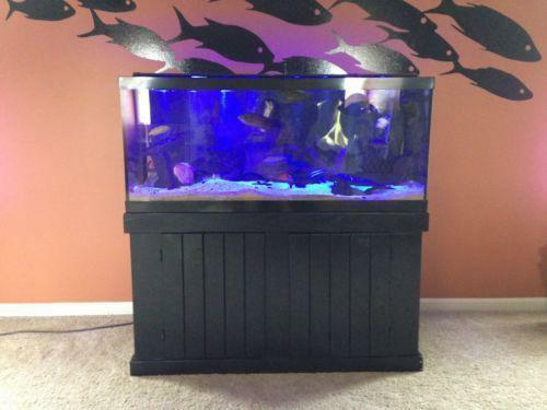 75 gallon fish tank ebay for 75 gallon fish tank dimensions