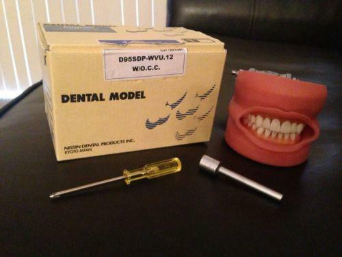 Nissin Dental Ebay