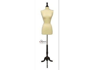 High Quality Size 6-8 Female Mannequin Dress Form Size Fwp-wbs-02bkx Wood Base