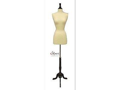 High Quality Size 6-8 Female Mannequin Dress Form Size F68wbs-02bkx Wood Base