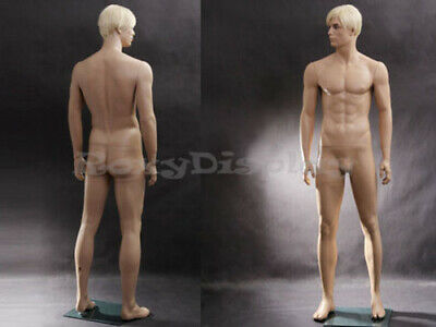 Realistic Male Mannequin With Molded Hair Mz-wen6