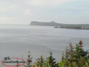 Ocean View Land for Sale St. John's Newfoundland image 6