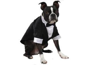 Dog Tuxedo Costumes  sc 1 st  eBay & Dog Tuxedo | eBay