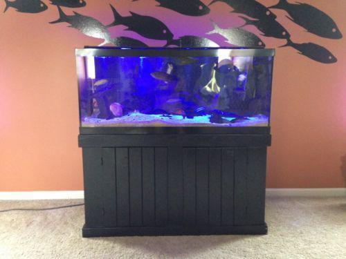 75 Gallon Fish Tank & 100 Gallon Fish Tank | eBay