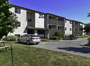 51 & 59 Campbell: Apartment for rent in Stratford Stratford Kitchener Area image 2