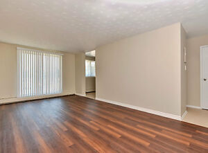 Upgraded Kitchens & Baths! Pet-Friendly Apt for Rent!