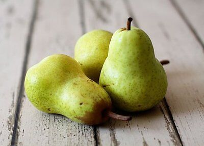 Perfect Pear (Perfect Pear Fragrance Oil Candle/Soap Making Supplies **Free Shipping)