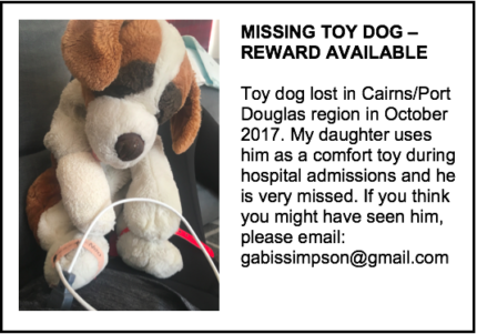LOST TOY DOG
