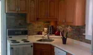 All Inclusive plus Wifi in gorgeous older fully renovated home. Cambridge Kitchener Area image 3