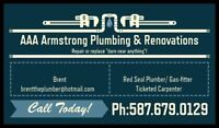 Plumber / Carpenter / Electrician