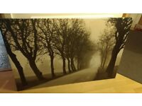 Large Ikea Canvas print - Misty Road
