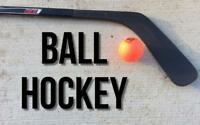 Friday Afternoon Ball Hockey -  mainly looking for a goalie