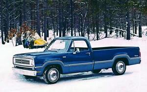 Wanted 1972 to 1978 Dodge D100 Adventurer Pickup Truck parts.