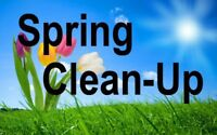 Sping clean up, lawn maintenance and lawn mowing.
