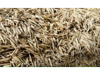 5 Kilograms of top quality grass seeds.