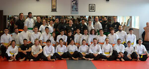 Martial Arts Instructor - No Experience Necessary! West Island Greater Montréal image 3