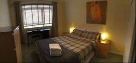07474149174 comfy room near Mile end only for 155pw