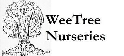 WeeTree Nurseries