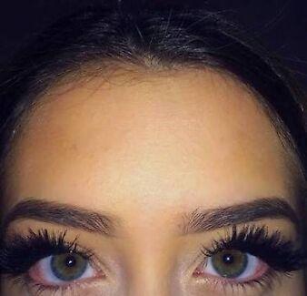 Eye brows ( plucking , tinting )